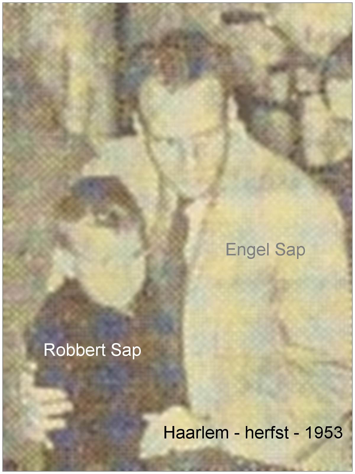 Engel Sap