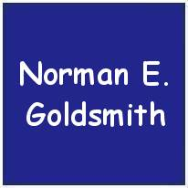 778461 - 80127 - Flying Officer - Pilot - Norman Edward Goldsmith - DFC - RAFVR - Age 20 - KIA