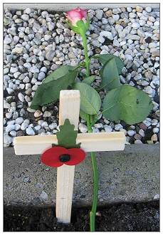 Poppy 2011 Moggridge - with 2nd version op Poppy cross